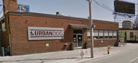 UrbanDog Fitness + Spa