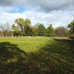 G-Ross-Lord-Park-Dog-Park-Off-Leash-Dog-Walking-Area-800-2