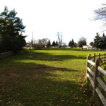 G-Ross-Lord-Park-Dog-Park-Off-Leash-Dog-Walking-Area-800-4
