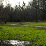 Sunnybrook-Park-Dog-Park-Off-leash-Dog-Walking-Area-800-2