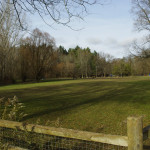 Sunnybrook-Park-Dog-Park-Off-leash-Dog-Walking-Area-800-5