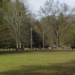 Sunnybrook-Park-Dog-Park-Off-leash-Dog-Walking-Area-800-7